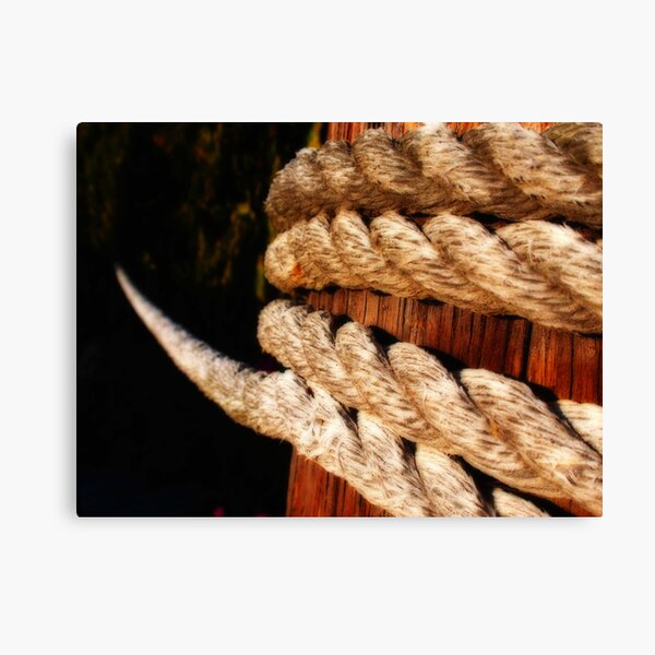 Against the Ropes Canvas Print