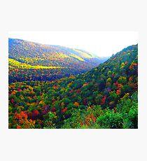 Autumn's Glory Photographic Print