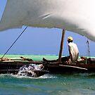 Sailin by James Hughes