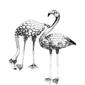 Flamingo Spectacles Drawing by linnw