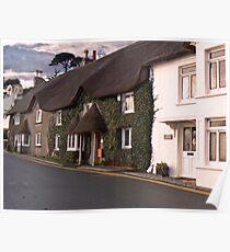 Quaint Cornish Cottages Poster