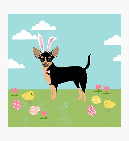 Chihuahua dog breed easter bunny costume pet portrait chihuahuas black and tan Photographic Print