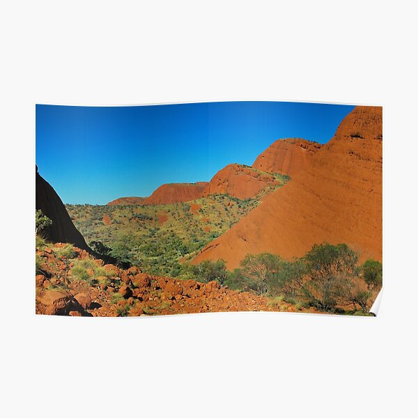 The Valley of the Olgas Poster