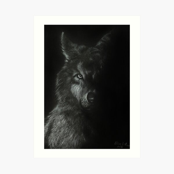 Wolf in shadows  Art Print
