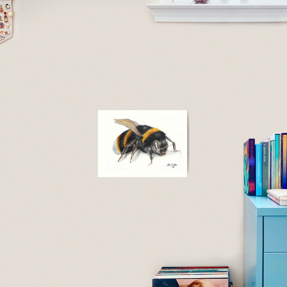 Bumble bee ink drawing Art Print
