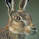 Hare by Deborah Holman
