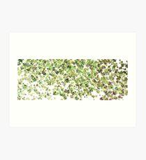 Green Frills Art Print