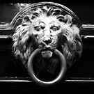 shot on iphone .. lion in brass by badduck09