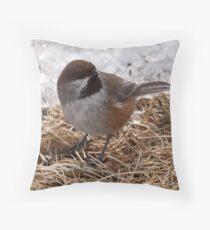 Boreal Chickadee  2 Throw Pillow