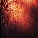 Secret Garden, Abstract Landscape by ItayaArt
