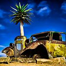 Old Truck and Quiver Tree. by Brendan Buckley