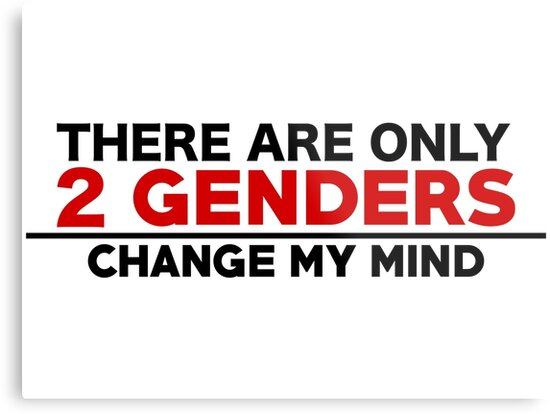 there are only 2 genders change my mind metal prints by sethallen21