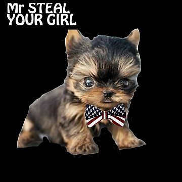Mr Steal Your Girl by yourking