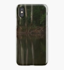 Grey Reflections  iPhone Case/Skin