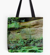 Ferny Grotto - Somersby Falls NSW Tote Bag
