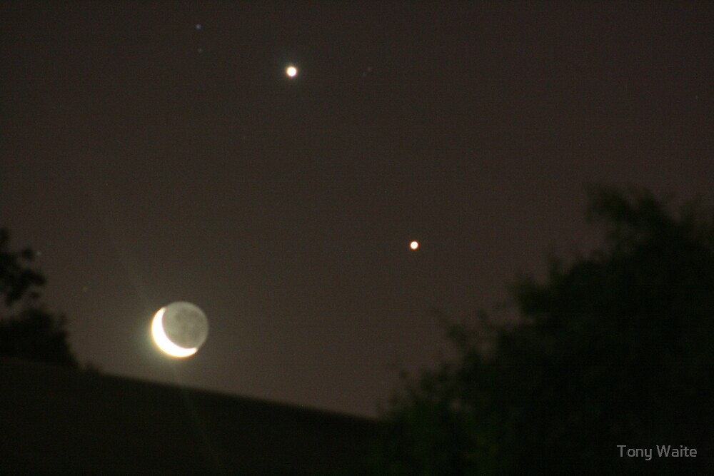Jupiter, Venus & Moon 1-12-2008 by Tony Waite