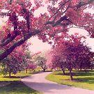 Cherry Orchard Charm by Jessica Jenney