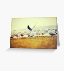 Friends Greeting Card