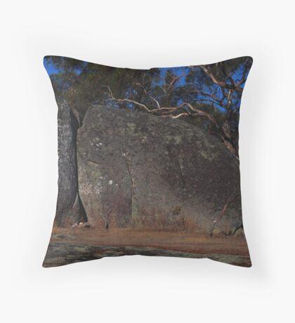 Seal Rock Throw Pillow