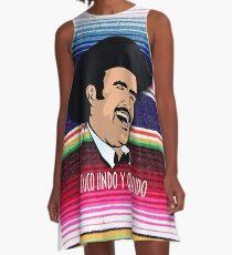 Vicente Fernandez A-Line Dress