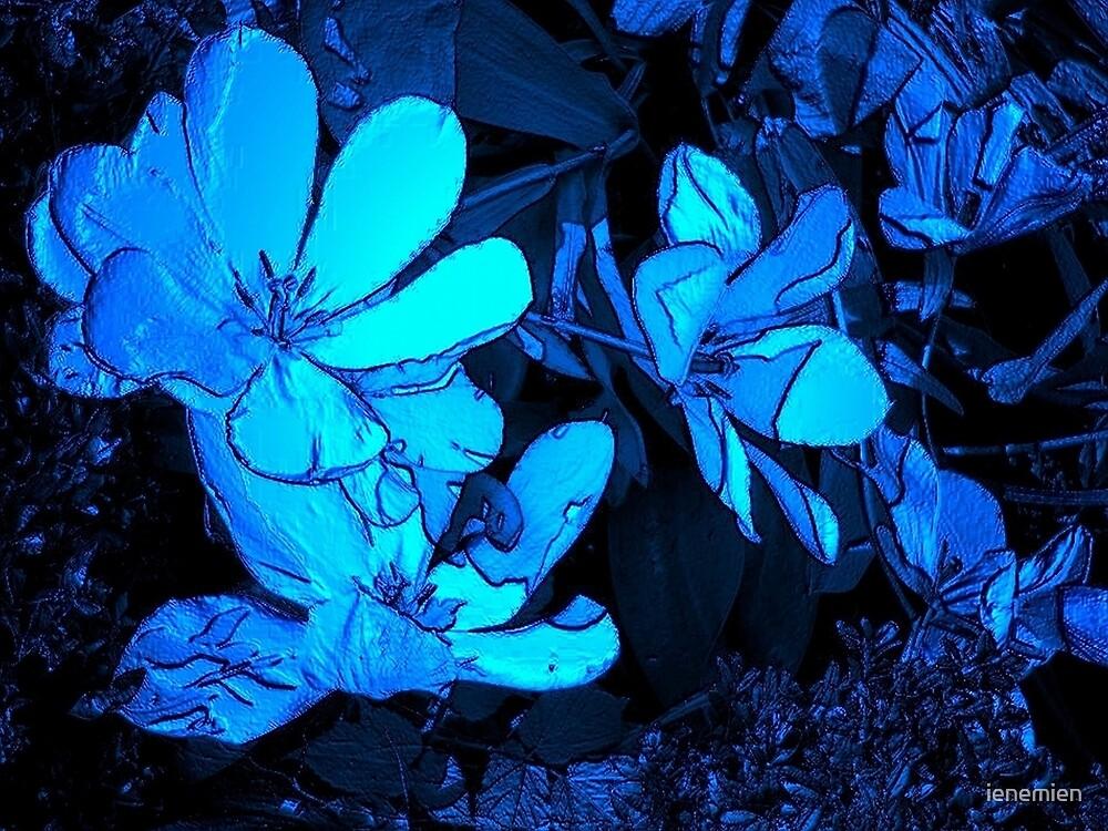 Tulips in Blue by ienemien