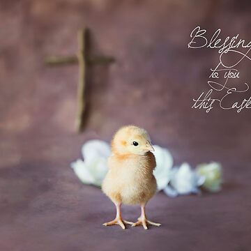 Blessings To You This Easter by ames777