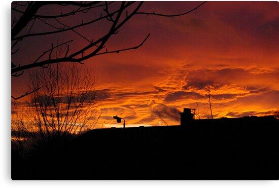 The Sky on Fire by Trevor Kersley