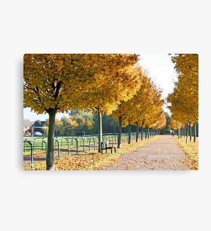 Autumn stroll Canvas Print
