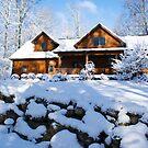Winter Bright by Diane  Marie Kramer