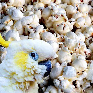popcorn cockatoo by FandomizedRose