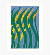 Bay Pipefish Art Print