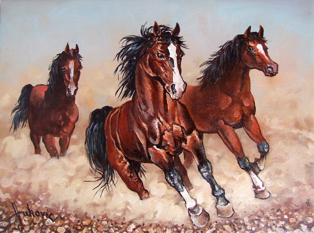 Runaway horses... by dusanvukovic