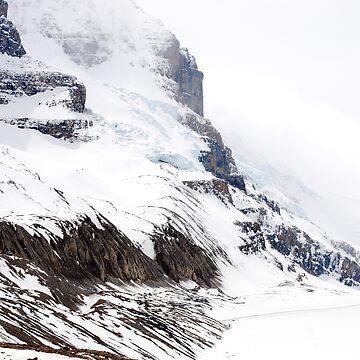 Athabasca Glacier  by buzzword
