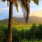 Garden Isle Overlook by DJ Florek