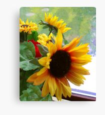 A Bunch Of Sun Canvas Print