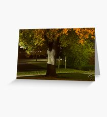 Hollow Tree Man Greeting Card