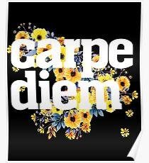 Cool, graphic Carpe Diem Poster