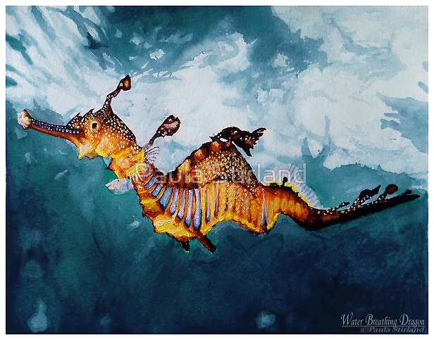 Water Breathing Dragon by Paula Stirland