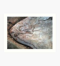 Ancient Creature Art Print