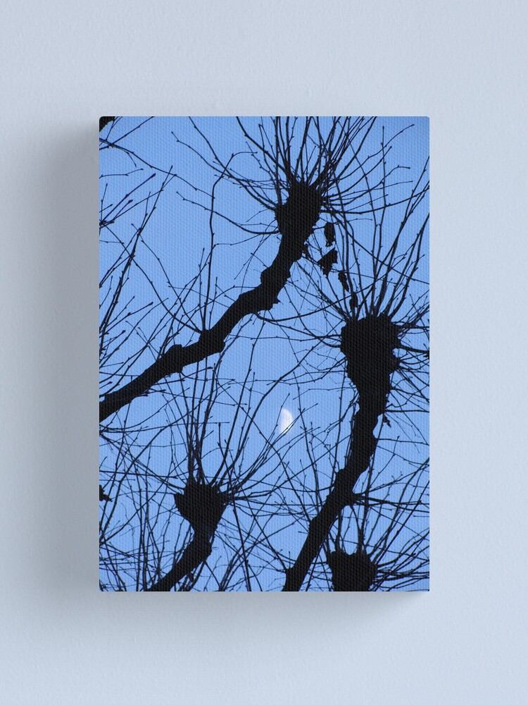 Alternate view of Reaching for the Moon Canvas Print