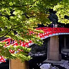 Red & Green in Japan by Patty Boyte