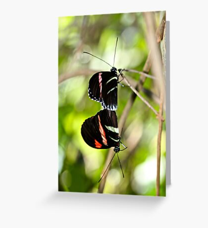 Hanging on a Moment Greeting Card