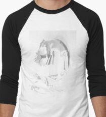 DLR Spirit Men's Baseball ¾ T-Shirt