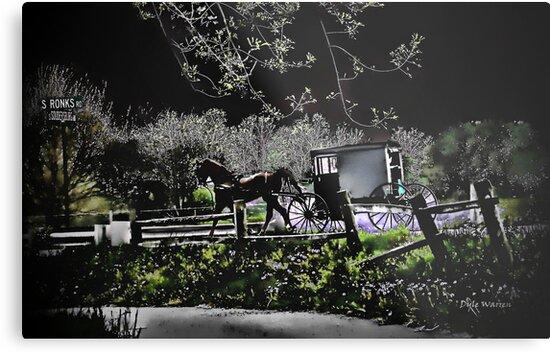 Amish Traveler by Dyle Warren