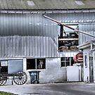Barn n' Buggy by Dyle Warren