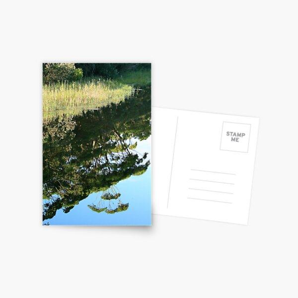 Thurra Reflections Postcard