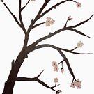 Cherry Blossom by shalayne
