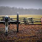 Mississippi Gun Position by Bob Moore
