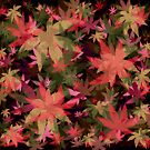 Candys Crazy Cannabis Camo 2 by Gypsykiss