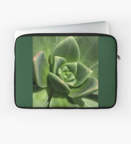 Green Faced Laptop Sleeve